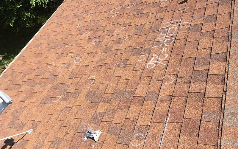 Roof Replacement Insurance